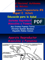 s reproductor fem y masc.ppt