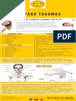 TFT para Traumas - Infográfico 2018