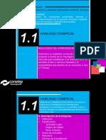 1.1 Viabilidad Comercial 2.pdf