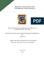 ROBO VEHICULAR EN LAS DENUNCIAS.docx