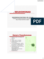 Cap 15 Pseudomonas, Microbiologia de Alimentos