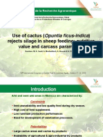 s55- Use of cactus rejects silage in sheep feeding