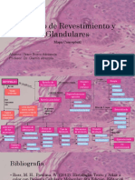 E. de Revestimiento y Glandulares. Grace Bravo2.pdf
