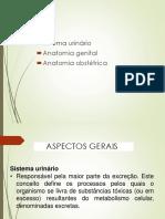 Edital Medicos Pmmb 15 Ciclo