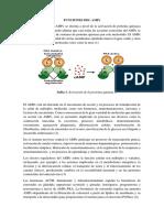 Funciones Del Ampc
