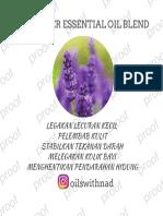 4052963_4746826.pdf