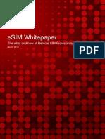ESIM Whitepaper v4.11