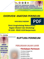 Slide Workshop Ruptura Perineum I-II Pra Pidt Hugi 7 (Ridlo)