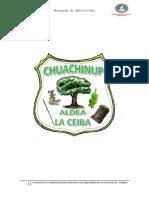 Proyecto Correcto La Ceiba Seminario
