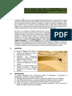 GUIA-DE-PRACTICA-PARA viaje informe.docx