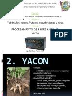 12procdeyacn-130223161601-phpapp01