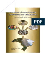 o-brasil-e-a-reglobalizacao-da-industria-das-terras-raras.pdf