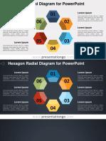 2 0138 Hexagon Radial Diagram PGo 16 9