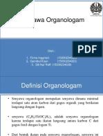 Organo Log Am