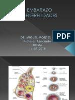 2da Clase - EMBARAZO GENERELIDADES.pptx