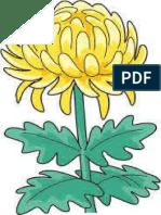 Crizantema PDF.bak