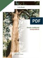 65124203-Direito-Ambiental-Jurisprudencia.pdf