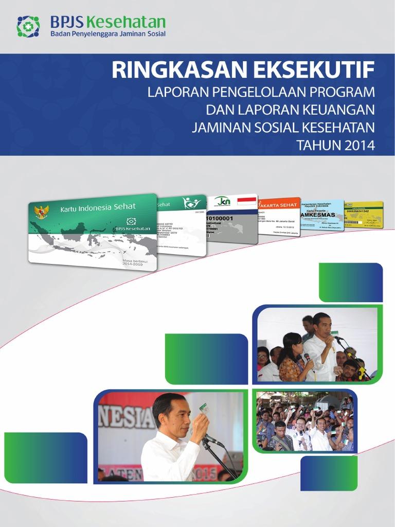 Buku Bpjs Eksekutif Laporan Perkembangan Program Pdf