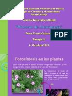 A.trejo Present.fotosin