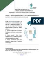 15082012_Modelo PER.pdf