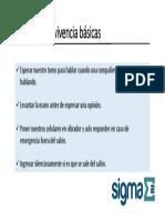 Programa SIGMA 2 0