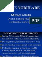 GUSILE-NODULARE (1)sd
