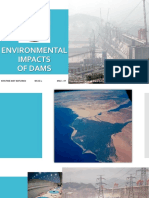 Environmental Impacts of Dam
