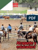 Pecuaria y Negocios - Ano 14 - Numero 168 - Julio 2018 - Paraguay - Portalguarani