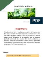 Gestión del Medio Ambiente 1.pptx