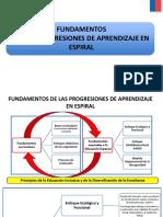 PROG.ESPIRAL PIE (002).ppt