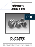 Piñon Norma BS.pdf