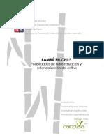 BAMBU EN CHILE.pdf
