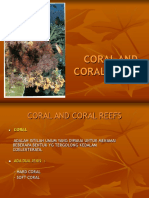 CORAL REEF JANUARI 2012.ppt