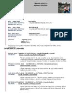 Curriculum Vitae Arturo Lizancos