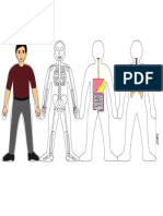 HUMAN BODY SYSTEMS-COLOURdoit.pdf