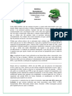 3- TranscriçãoEProcessamentoRNA.pdf