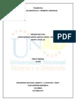 Jorge Garcia Aporte 1 Individual