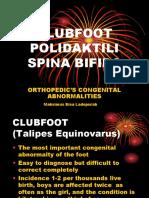 CLUBFOOT, Polydactily, Spina bivida.ppt