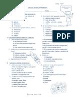 42105775-Examen-de-Ciencia-y-Ambiente.docx