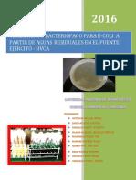 INDICE MICROOBIOLOGIA INVESTIGACIAS.docx