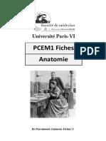 Anatomie_PCEM