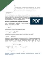 DINAMICA DE SISTEMAS S1O Y S2O.docx