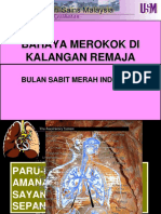 Bahaya Merokok Di Kalangan Remaja1