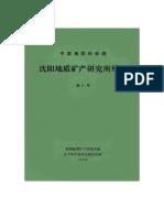 Qinyun Zhang, 1990