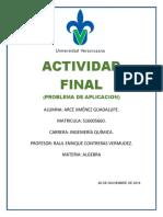 ACTIVIDAD FINAL.docx