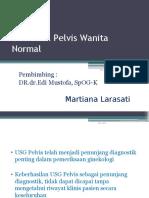 USG Pada Pelvis Wanita Normal_WB 3 TIL