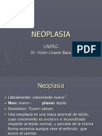 Neoplasia Definicion Clasificacion