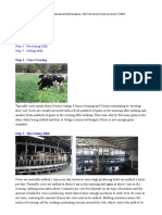 1 How is Milk Made, milk production and biosynthesis.doc