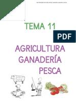 agricultura-ganaderia-pesca