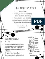 BALANTIDIUM COLI-2_56.pptx